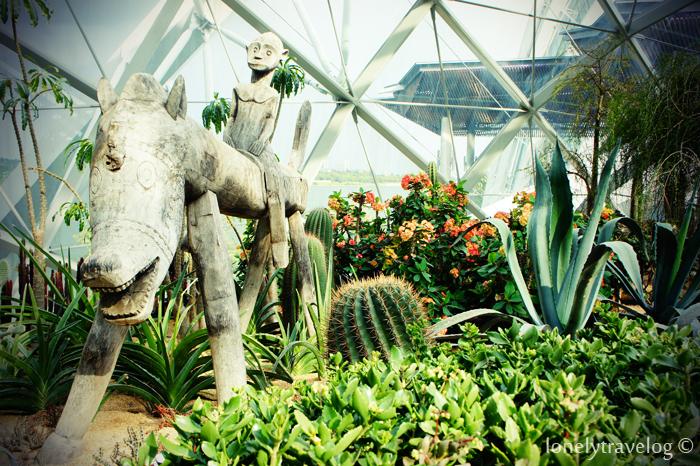 Succulent Garden 3