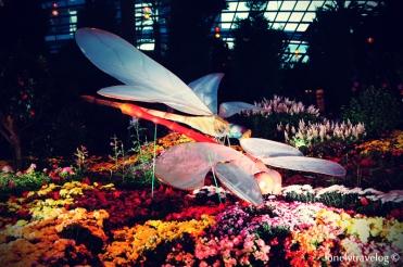 MAF - Flower Dome