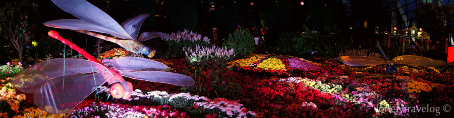 Garden By The Bay Flower Festival mid-autumn festival @ gardensthe bay – lonely travelog