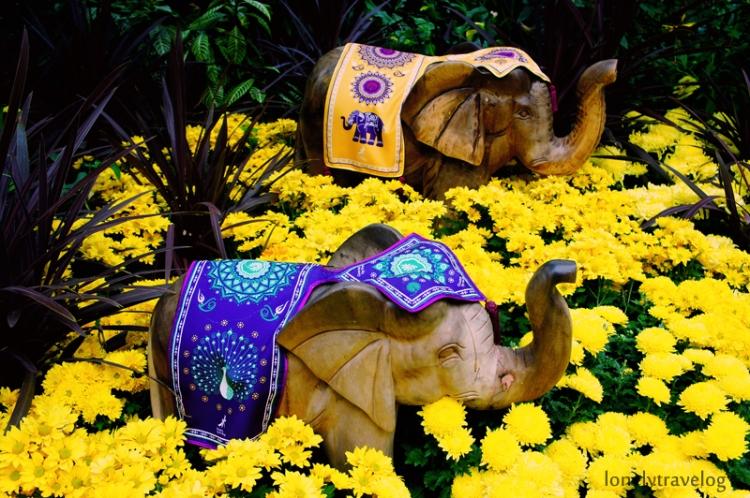 Deepavali - FlowerDome