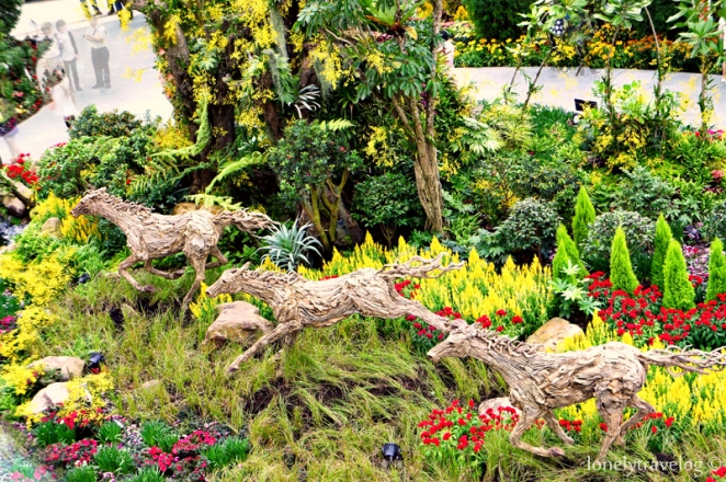 Year of the Horse Floral Display