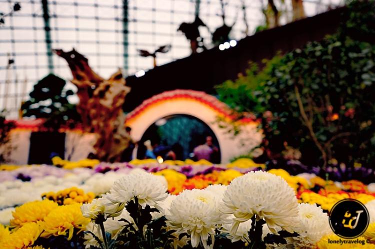 Garden By The Bay Flower Festival mid-autumn festival @ gardensthe bay 2015 – lonely travelog