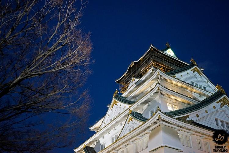 Osaka Castle (7)