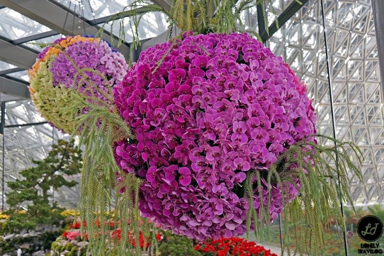 Floral Fantasy 19 (11)
