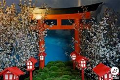 Sakura Matsuri 2019 (10)
