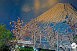 Sakura Matsuri 2019 (11)